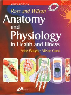 Shop for Ross And Wilson Anatomy And Physiology In Health And Illness. Starting from Choose from the 3 best options & compare live & historic book prices. Gross Anatomy, Body Anatomy, Medical Textbooks, Medical Students, Medical School, Nursing Students, Greys Anatomy Book, Pharmacy Books, Libros