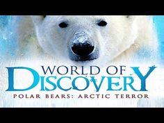 Cool Cute Cubs - Amazing Animal Babies: Polar Bear Cubs (Ep 6) - Earth Unplugged - YouTube