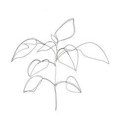 art drawings line art drawing idea. visit my - art Minimal Art, Minimal Drawings, Art Drawings, Single Line Drawing, Continuous Line Drawing, Single Line Tattoo, Floral Illustration, Watch Drawing, Art Minimaliste