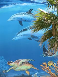 Guy Harvey painting at Surfstyle beach shop