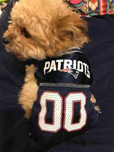 7b341a8c1 Pets First NFL Patriots vs Atlanta Falcons Jersey