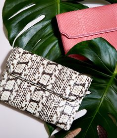 Baraboux creates luxury bags that meet the dynamic lifestyle of today's woman, from clutch and tote to shoulder bags, all with highest quality exotic skins. One Bag, Luxury Bags, Ss16, Python, Exotic, Shoulder Bag, Handbags, Black And White, Rose