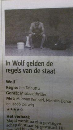 Wolf (Nl)