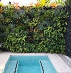 Backyard Porch Ideas Small Plunge Pool 46 Best Ideas
