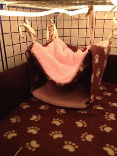 Guinea Pig Cage Ideas | Guinea pig cage ideas for bedding, toys, other I'm gonna have to try this :)