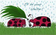 Whimsical Ladybugs ~ zazzle.com/oneartsymomma*