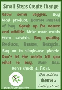 Get inspired about saving the environment. Here are some things you can do to help! #sustainable #ecofriendly