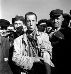 Prisoners at Buchenwald display their  identification tattoos shortly after camp's liberation by Allied forces, April 1945.