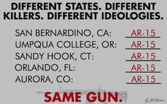 The common denominator. There is NO REASONABLE REASON WHATSOEVER for one civilian to own this type of gun. For what?