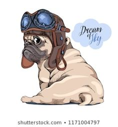 Adorable beige puppy Pug in a Pilot helmet with glasses. Dream of sky – letterin… Adorable beige puppy Pug in a Pilot helmet with glasses. Dream of sky – lettering quote. Humor card, t-shirt composition, hand drawn style print. Black Pug Puppies, Dogs And Puppies, Funny Puppies, Pomeranian Colors, Pug Wallpaper, Baby Animals, Cute Animals, Pug Art, Dog Vector