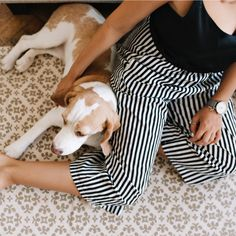 TWISTED ENVY All You Need is A Beagle Baby Funny Leggings
