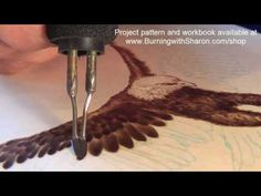 Pyrography: How to Woodburn an Eagle Part 1 – Torso, Black Feathers, and White Feathers - YouTube