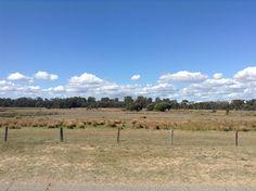 #outback #Australia