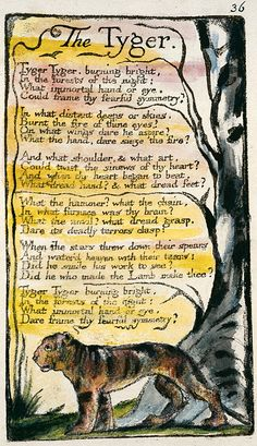 The Tyger: Songs of Innocence and Experience by William Blake I love the illustration as well : ) Tiger Makes Me Think of My Sending Healing Love and Light AsAlways Poetry Text, Poetry Quotes, Songs Of Innocence, English Poets, Pomes, Beautiful Words, Book Art, Writing, Inspiration