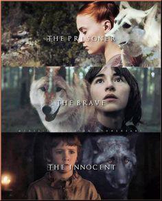 game of thrones: Clothing, Shoes & Jewelry Sansa Stark, Bran Stark, Game Of Thrones Wallpaper, Game Of Thrones Meme, Game Of Thones, Cersei Lannister, Daenerys Targaryen, Got Memes, Reading Games