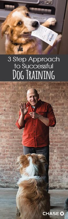 One of Hollywood's best animal trainers, Joel Silverman, shares his three-step approach to successful dog training. Hint: It's all about the relationship between the student and the trainer.