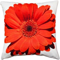 Pillow Decor Bold Daisy Flower Red Throw Pillow 20X20 ($45) ❤ liked on Polyvore featuring home, home decor, throw pillows, pillows, red home decor, oversized throw pillows, flower stem, indoor outdoor throw pillows and flower home decor