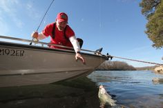 FLE FLY Go GO Minnows. Photo copyright Brad Wiegmann Outdoors. http://www.bradwiegmann.com/lures/crappie-lures/1201-how-to-catch-grand-lake-white-bass-and-crappie.html