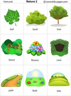 Kids Pages - Flashcards English Activities For Kids, Learning English For Kids, English Language Learning, Teaching English, Learn English Words, English Study, English Class, English Lessons, English Vocabulary