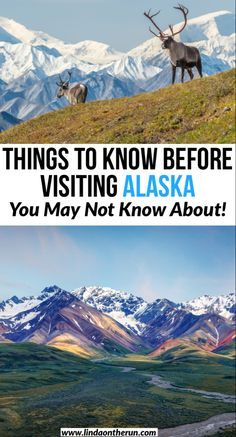 Planning a trip to Alaska? Here are 9 things to know before traveling to Alaska| What you need to know as you are planning your trip to Alaska| USA| #travel #usa #alaska