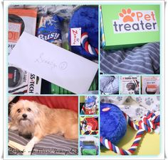 Pet Treater Subscription Box #Review | Get FREE Samples by Mail | Free Stuff