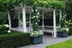 The mandevillea & white flowers echo the white wood of the pergola. Getting plants to sit down & blend in w all the other garden elements makes for a serene space. When plants talk too much, bicker, or compete w one another, the space will take a much more lively turn.Deciding how high you like the volume outdoors can help you decide what and how to plant. :)