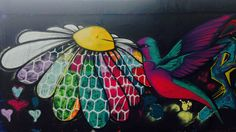 Street art colibri