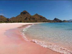 Bagi Jemma, berlibur ke pantai adalah aktivitas liburan favorit. Setelah mengunjungi banyak