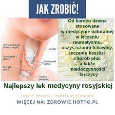Najlepszy lek z medycyny rosyjskiej: leczy zaburzenia wydzielania hormonu tarczycy!  Od bardzo dawna jest stosowana w medycynie naturalnej w leczeniu reumatyzmu, oczyszczaniu tchawicy, leczeniu kaszlu i chorób płuc a także niedoczynności tarczycy  Duża liczba osób cierpi na Hypothyroidism, Healthy Kids, Health Fitness, Drinks, Remedies, Weddings, Food, Women, Diet