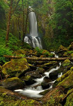 Lower Kentucky Falls -  Siuslaw National Forest, Oregon