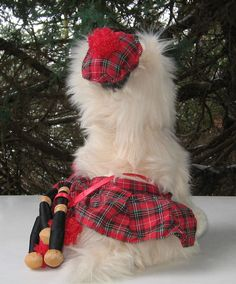 """Collectable Scottish Terrier plush toy. """"Haggis"""" from the Disney Movie """"The Search For Santa Paws"""". Outfitted with a Tam, Kilt and set of Bagpipes. In very good condition. 