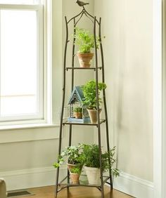 Incredible Tiered Plant Stand Design Bring Freshness for Home Interior: Glass Window Design Ideas Combine With Iron Tiered Plant Stand And Wooden Flooring Plus White Wall Paint For Home Interior Decoration Potted Plants, Indoor Plants, Plantas Indoor, Decoration Bedroom, Small Space Gardening, Plant Shelves, Garden Supplies, Plant Decor, Houseplants