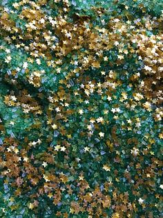 Sprinkle mix Leprechaun Magic Dust Sugar St. Patrick's Neon Yolk