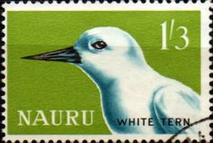Nauru 1963 Birds SG 62 Fine Mint SG 62 Scott 54 Other British Commonwealth Empire and Colonial stamps for sale Here