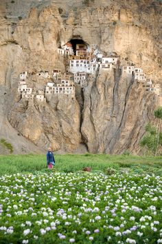 (LARGE PICTURE) Phugtal Monastery or Phugtal Gompa (often transliterated as Phuktal) is a monastery in south-eastern Zanskar, Ladakh in northern India