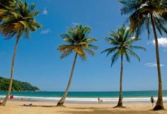 Tobago Island, British Virgin Islands in the Caribbean