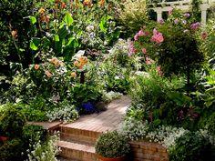 Heaven!  Yes please!!!  Roses, lithadora, foxglove, alyssum, canna, purple fountain grass, ivy, lamp's ear....on and on!