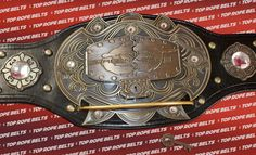 Dragon Gate Pro Wrestling Belt