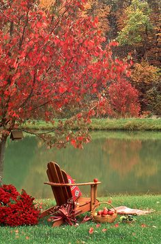 Adirondack chair under fall maple tree with a basket of apples and red mums, Missouri USA Bath Body Works, Fall Picnic, Autumn Lake, Autumn Scenes, Autumn Painting, Fall Paintings, Photos Voyages, Autumn Photography, Fall Pictures
