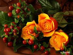De vez en cuando es bueno que uno se haga algún que otro regalo en días especiales...¿por que no? Yo me regalé mis rosas favoritas y ahora las comparto contigo.