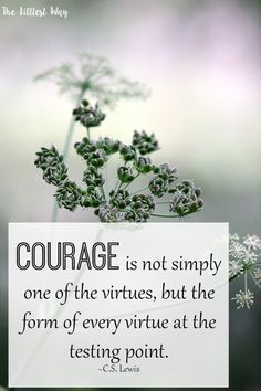 Courage is not simply one of the virtues, but the form of every virtue at the testing point.  (CS Lewis)