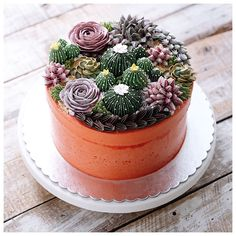 Repost ivenoven Terrarium in the clay pot. It's buttercream cake anyway