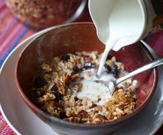 Low-Carb, Gluten-Free Granola Recipe HCG Phase 3 friendly