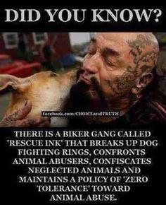 """""""Sabian que hay una banda de Bikers llamada Rescue Ink que se dedica a disolver las peleas de perros, que confronta a los que abusan de los animales, confisca animales descuidados y tiene cero tolerancia hacia el abuso animal?"""" ✌️ Todos podemos ayudar con nuestro granito de arena. Hagamos algo por los demas!  #ActitudDisturbed #NoALosEstereotipos #DisturbedCulture #NoAlAbusoAnimal #DisturbedTendencies"""