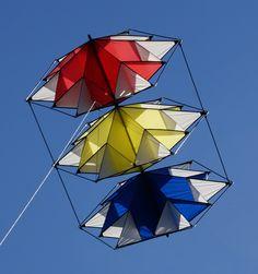 Tripple Lotus Mondriaan, Wibo's Kites