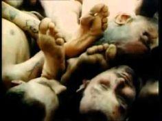 HOLOCAUSTO-IMAGENS RARAS E INÉDITAS EM CORES REAIS (DUBLADO).mp4