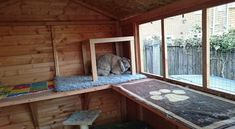 All sorts of rabbit housing idea for you to view. Great ideas, lots of fun and ways to make your bunnies' housing an attractive feature in the garden/home as well as a fantastic environment for. Rabbit Hutch Plans, Outdoor Rabbit Hutch, Rabbit Hutches, Bunny Sheds, Diy Bunny Hutch, Quail House, Rabbit Enclosure, Sid And Nancy, Rabbit Run