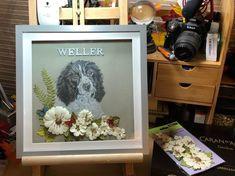 ellieartwork.comPet Portraits, Art Gifts, Surreal Art and Custom Artwork Pastel Pencils, Coloured Pencils, Paper Frames, Box Frames, Memory Frame, Large Animals, Pet Names, Pet Memorials, Surreal Art