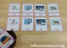 Pink Reading 3 Part Phonetic Reading Cards with a Winter theme