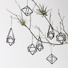 modern himmeli ornaments - these are made of drinking straws and string!  Neato!